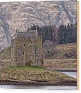 Stalker Castle Wood Print