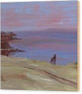 Stallion At Dingle Bay Wood Print