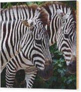 Stallions Wood Print