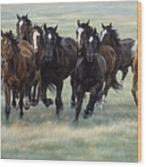 Stampede Wood Print by JQ Licensing