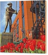 Stan Musial Statue On Opening Day  Wood Print
