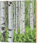 Stand Of Birch Wood Print