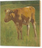 Standing Calf Wood Print