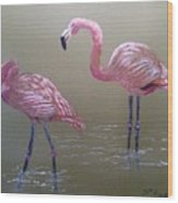 Standing Flamingos Wood Print