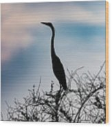 Standing High - Silhouette Wood Print