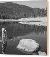 Standing In Comanche Reservoir Wood Print