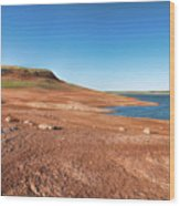 Standing On The Lakebed Wood Print