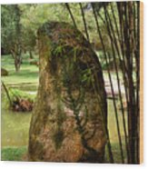Standing Stone With Fern And Bamboo 19a Wood Print by Gerry Gantt