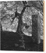 Standing Stones Near The Tree Wood Print
