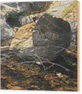 Stanislaus Rocks Spring Wood Print