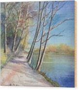 Stanley Park Wood Print