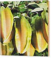 Star Apple Fruit On Tree Wood Print