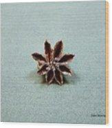 Star Flower Wood Print