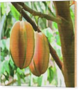 Star Fruit On The Tree Wood Print