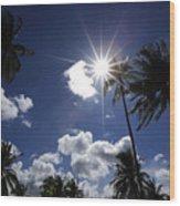 Star In Bintan Wood Print