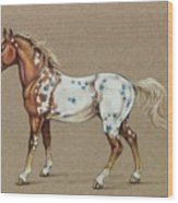 Star Spangled Horse Wood Print