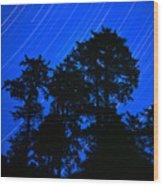 Star Trails Behind Ruby Beach Tree Group Wood Print