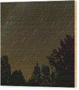 Star Tripping Wood Print