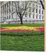 Star Tulips Wood Print
