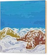 Starfish 1 Wood Print by Lanjee Chee