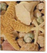 Starfish And Seashells Wood Print