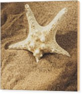 Starfish In Sand Wood Print