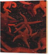 Starfish Mania Wood Print