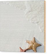 Starfish On Tropical Beach Wood Print
