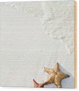 Starfish On Tropical Beach Wood Print by Mehmed Zelkovic