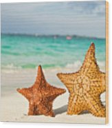 Starfish On Tropical Caribbean Beach Wood Print