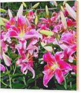Stargazer Lilies #5 Wood Print