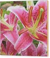Stargazer Lilies At Their Best Wood Print