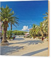 Stari Grad On Hvar Island Palm Waterfront Wood Print