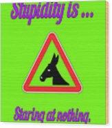 Staring Bigstock Donkey 171252860 Wood Print