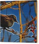 Starling In Winter Garb - Fractal Wood Print