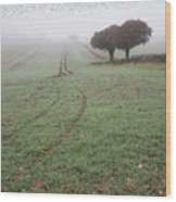 Starling Murtmuration In Foggy Misty Autumn Morning Landscape In Wood Print