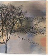 Starlings At Dusk Wood Print