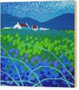 Starry Night In Wicklow Wood Print by John  Nolan