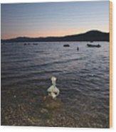 Starry Sky Over Lake Tahoe Wood Print