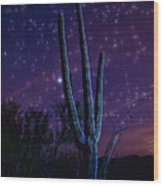 Starry Starry Sonoran Skies  Wood Print