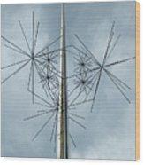 Stars At Air And Space Wood Print