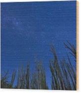 Stars Over Cactus Wood Print