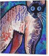 Startled Cornish Rex Cat Wood Print by Svetlana Novikova