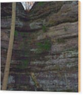 Starved Rock No 1 Wood Print