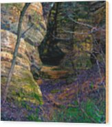 Starved Rock No 2 Wood Print