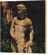 Statue In The Garden In Venice Wood Print