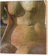 Statue In The Nude Wood Print