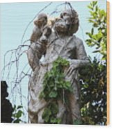 Statue In Venice Wood Print