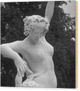 Statue London England Park Wood Print