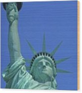 Statue Of Liberty 14 Wood Print